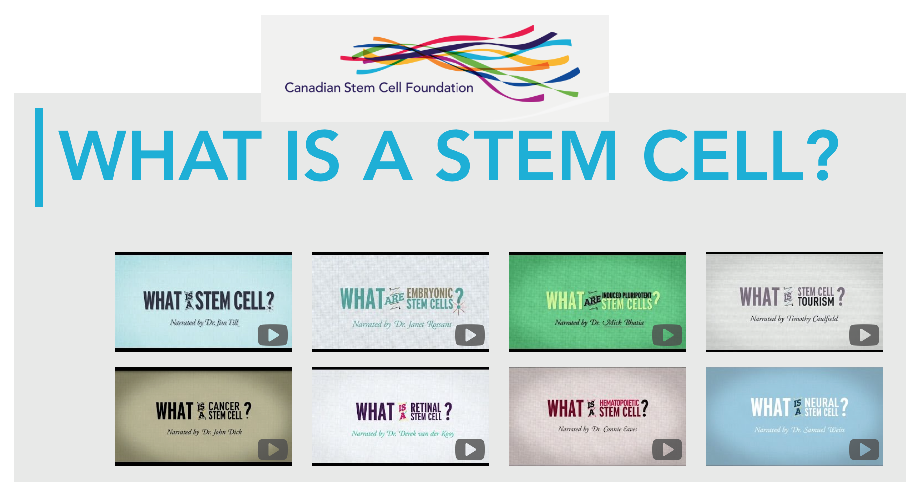 What is a Stem Cell? Canadian Stem Cell Foundation