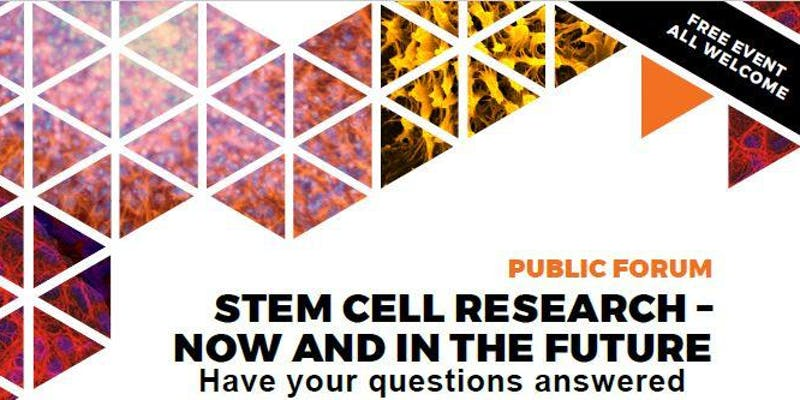 STEM CELL RESEARCH – NOW AND IN THE FUTURE